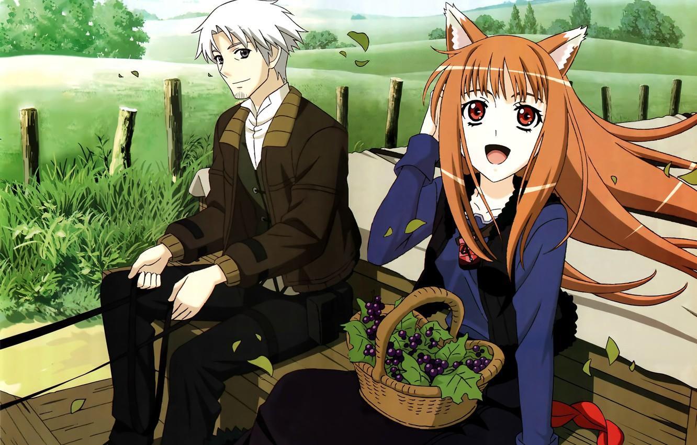 Ecnomical anime like how a realist hero rebuilt the kingdom, Spice and Wolf